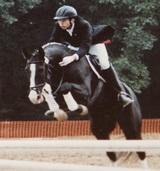 Andreas Heine mit Pferd am Sprung