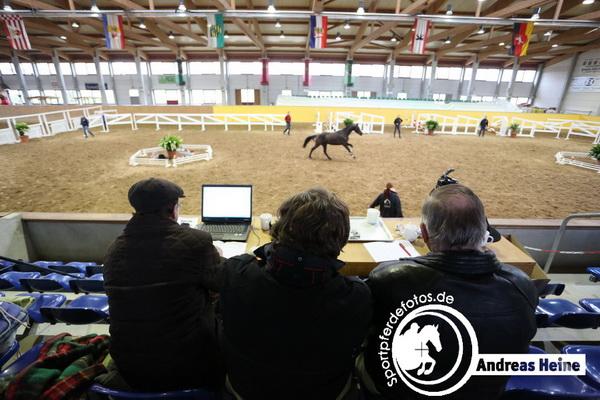 - Freispringchampionat in Prussendorf 2014