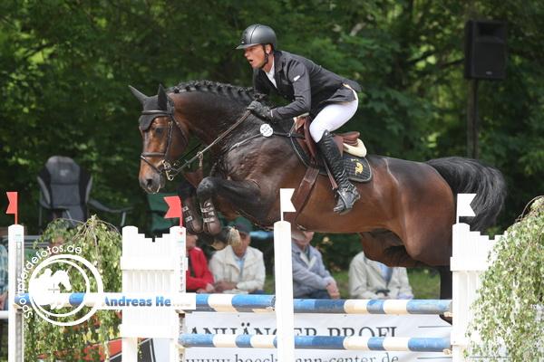 Bastian Freese auf Ninyon - XXI. Landgestütsturnier und IX. Championatsturnier Prussendorf 2014