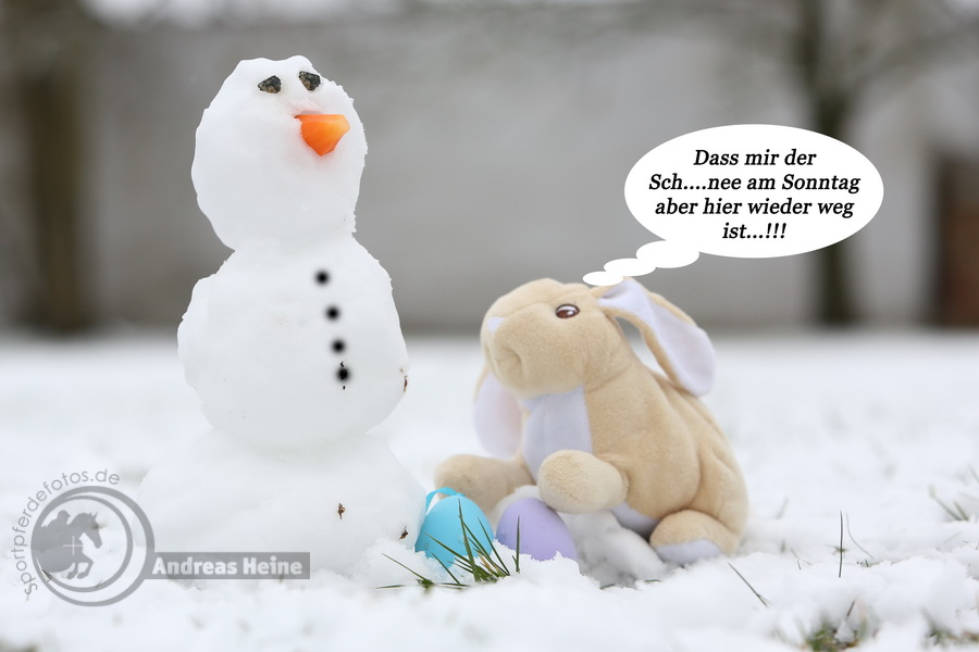 Schneemann vs. Osterhase